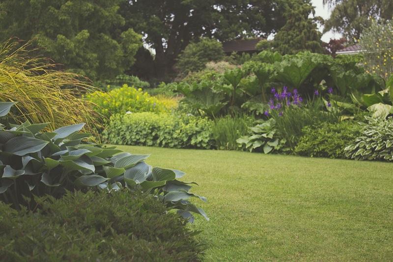Održavanje okućnice - Uređenje travnjaka